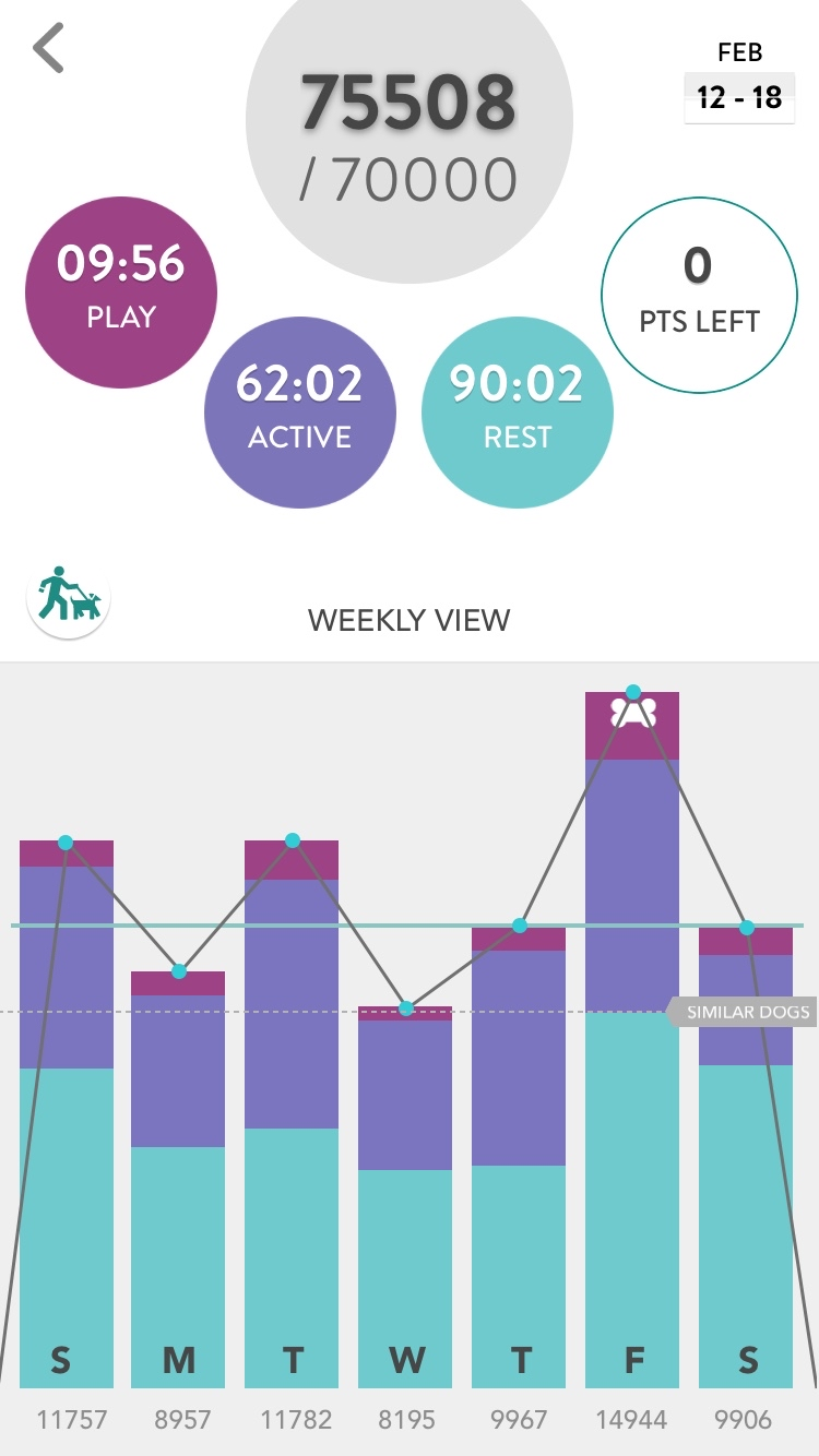 Fitbark app